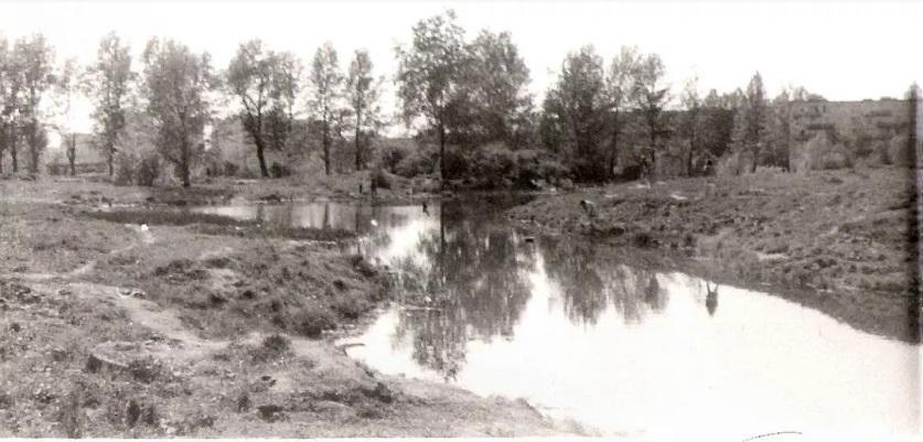 река волковка спб старое фото