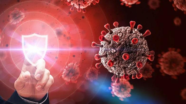 антитела коронавирус фото