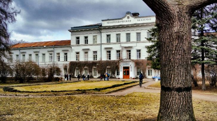 лесотехнический университет