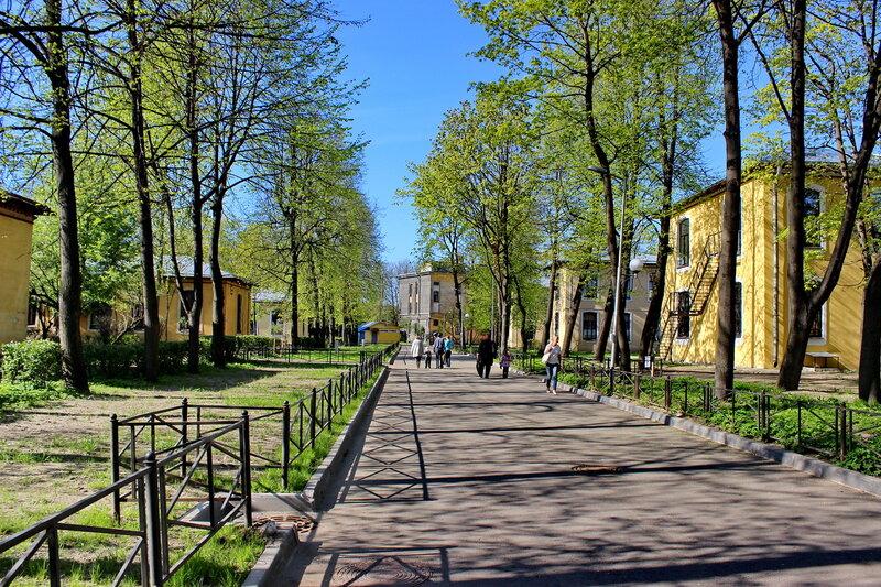 педиатрический институт петербург литовская улица